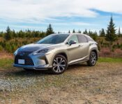 2022 Lexus Rx 350 Have All Wheel Drive Is Pictures Cost