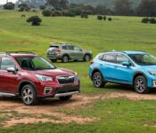 2022 Subaru Forester Cost Configurations Colors Canada Towing Capacity